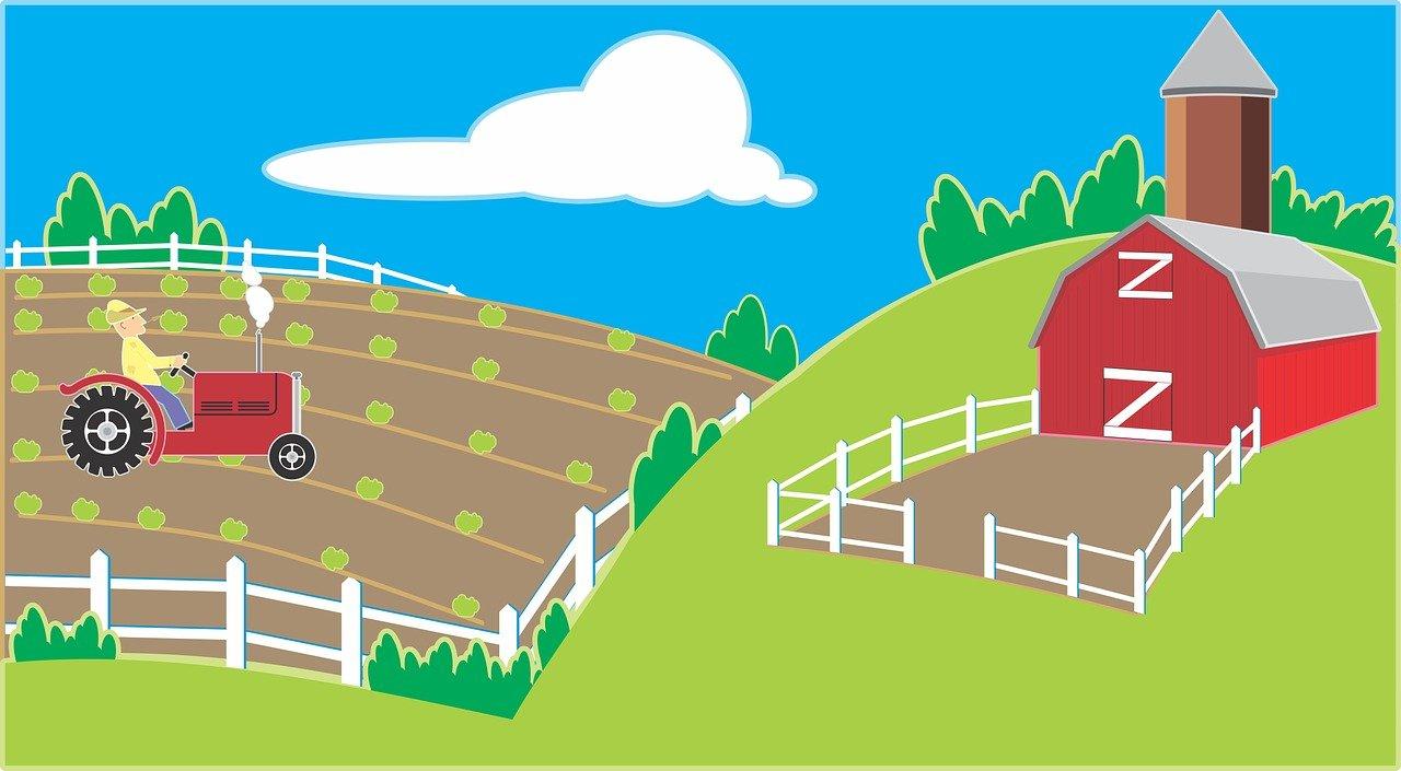 農業の魅力4選