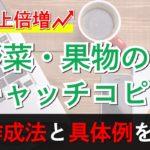 野菜・果物のキャッチコピー作成法と具体例を解説!【売上倍増】