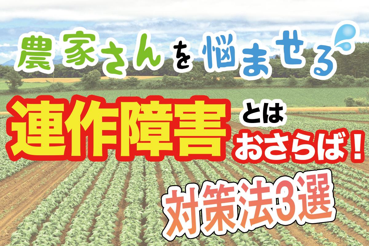 農家さんを悩ませる連作障害とはおさらば!おすすめ対策法3選