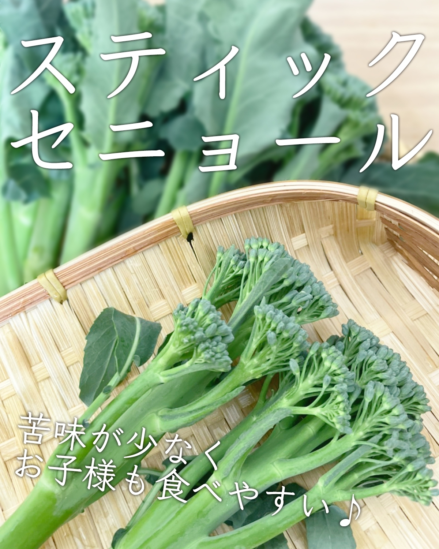ネットショップ用野菜の写真撮り方