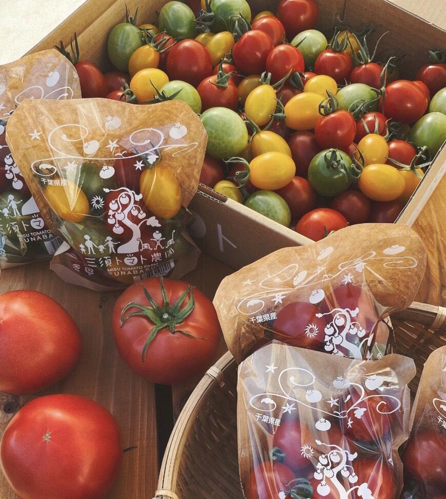 野菜・果物の写真の撮り方