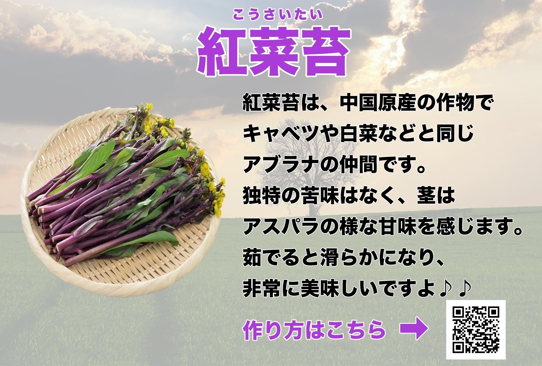 野菜が売れるポップ