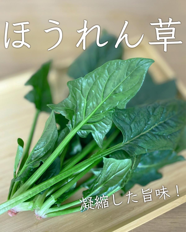 野菜・果物の商品写真の撮り方