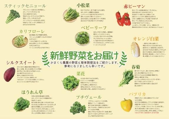 野菜通販のお礼状