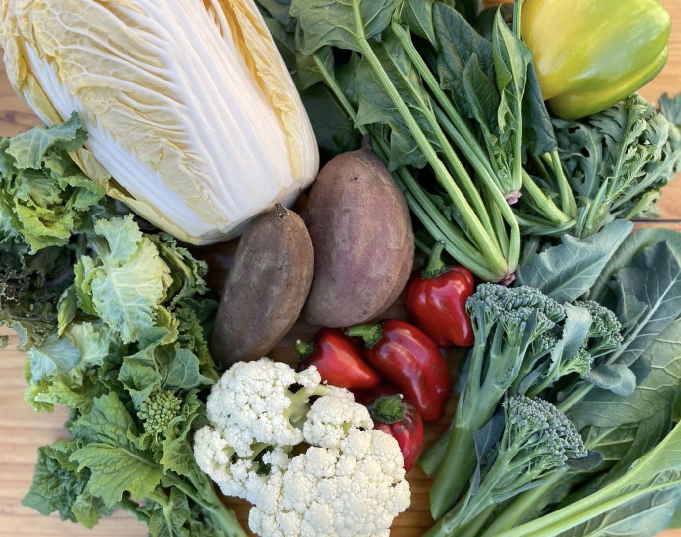 野菜・果物の魅力を引き出す写真の撮り方!【スマホでOK】