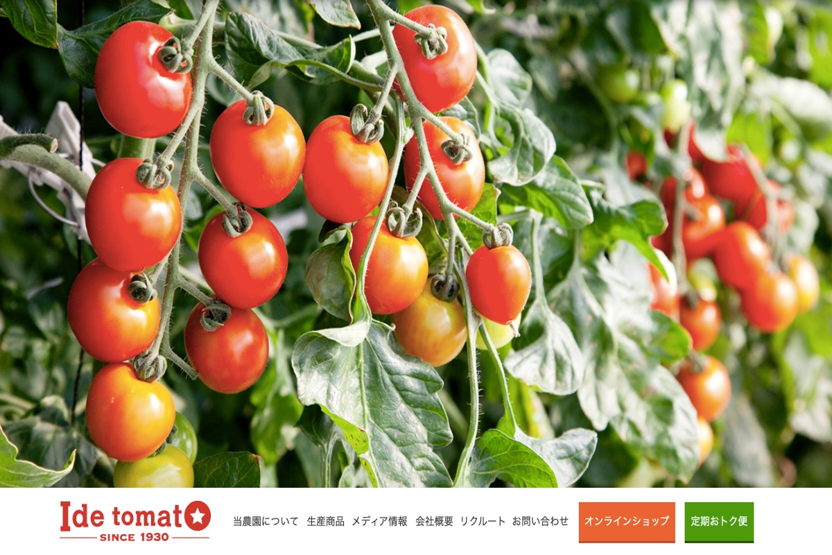 トマト農家さんのホームページその2:井出トマト農園さま