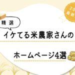 【精選】イケてる米農家さんのホームページ4選!【2021最新版】