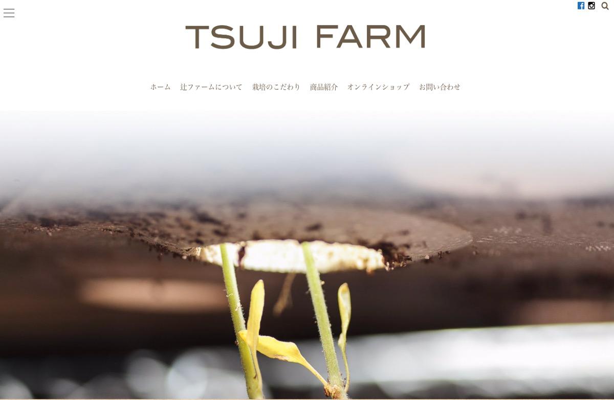 トマト農家さんのホームページその4:辻ファームさま