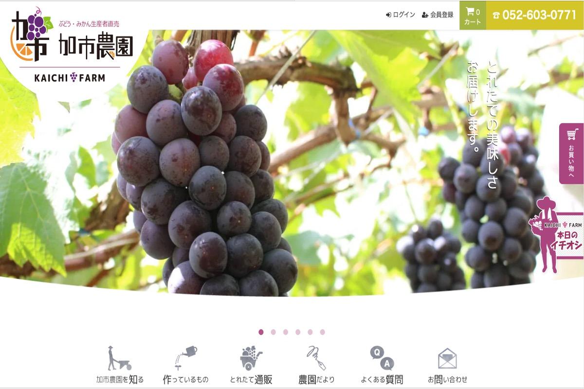 みかん農家さんのブログ・SNSその5:加市農園さま