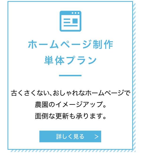 ホームページ制作単体プラン
