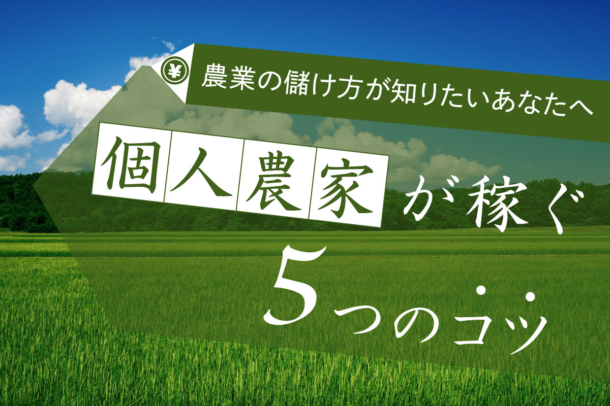 【農業の儲け方が知りたいあなたへ】個人農家が稼ぐ5つのコツ