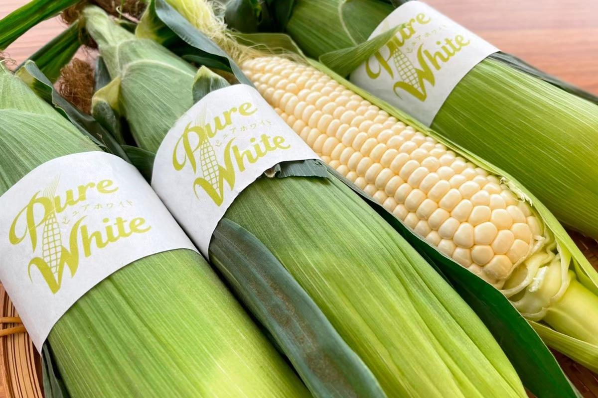 高く売れる野菜その5:ホワイトコーン