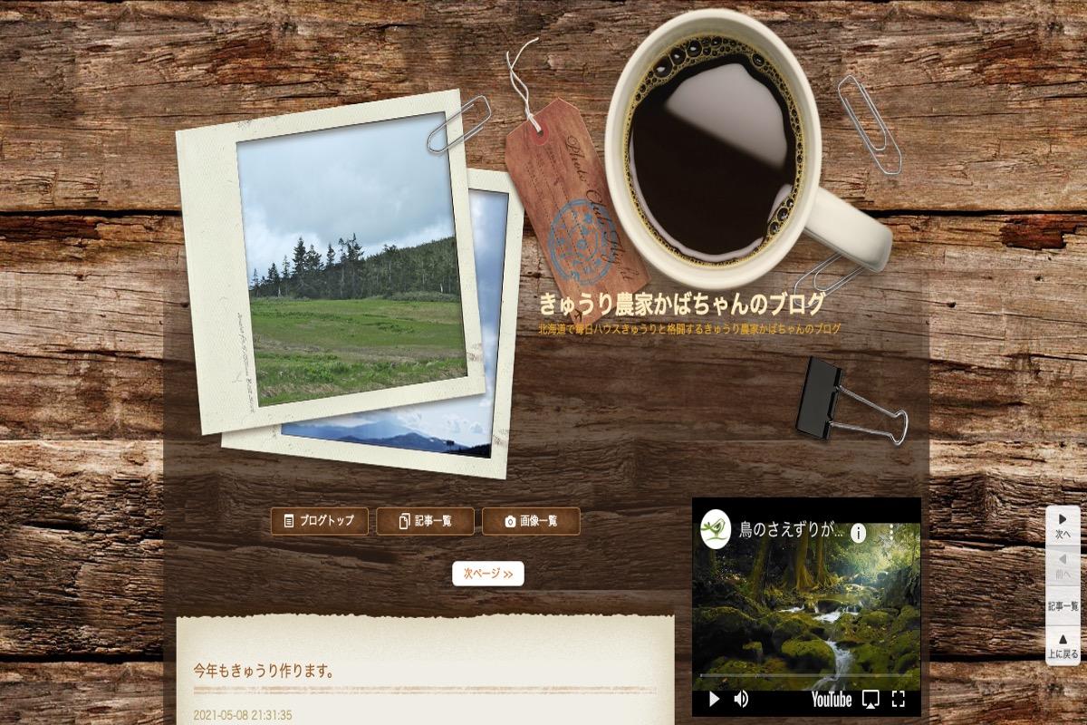 きゅうり農家さんのブログその4:きゅうり農家かばちゃんのブログさま