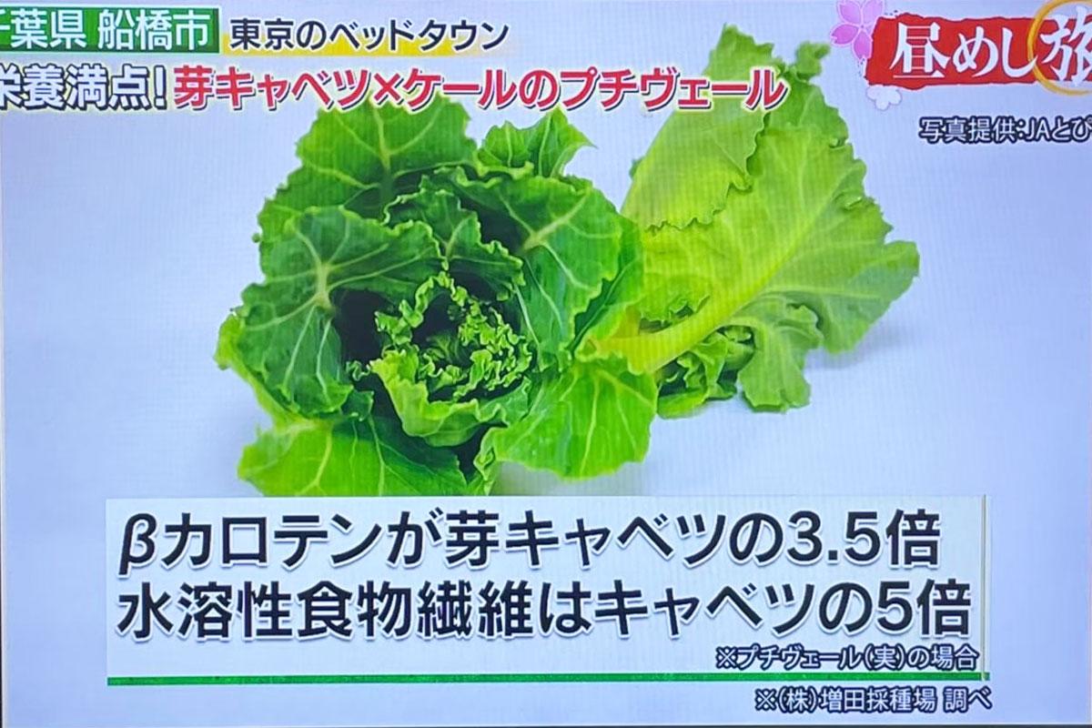 高く売れる野菜:プチヴェール